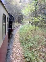 Selketalbahn/101208/unterwegs-nach-alexisbad Unterwegs nach Alexisbad