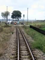 Dampfbetrieb/104374/strecke-bei-siersleben Strecke bei Siersleben